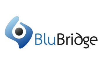 BluBridge Solutions Inc.